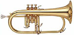 Flugel Horn Getzen Eterna Custom Flugel Horns