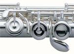 Pearl 665E Flute