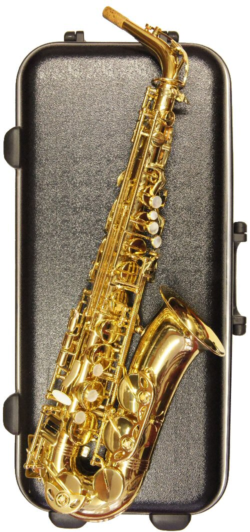 Second Hand Trevor James Revolution II Alto Sax